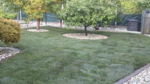 kompletna-pokladka-travovych-kobercov-so-sietami-proti-krtom-obrubnikmi-na-kosenie-tvorba-zahonov-dosadzanie-niektorych-stromov[3]